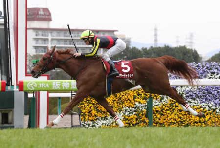 【競馬予想】[2]第62回 阪神牝馬ステークス(G2) /2019