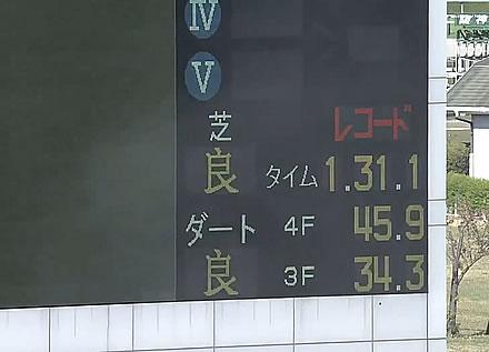【桜花賞】1.31.1でレコードタイムを0.8も更新wwwwww